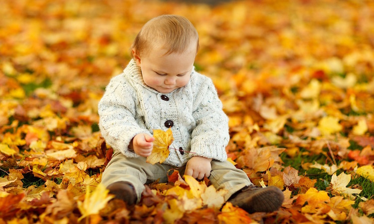 hoja actividades otoño